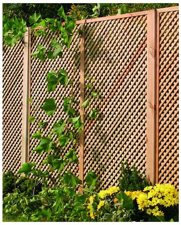 Gęsta kratka ogrodowa Clementine jako ogrodzenie